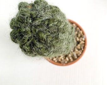 Knit Cactus // Pencil Cactus, Fuzzy Knit Cactus Planted in Terracotta Pot // Boho Home Decor // Home Office Decor // Desk Accessory