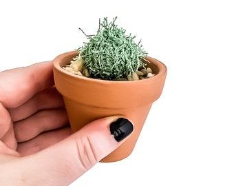Knit Cactus // Barrel Cactus, Knit Cactus Planted in Mini Terracotta Pot // Boho Home Decor// Home Office Decor // Desk Accessory