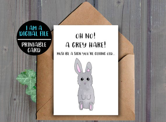 DIGITAL DOWNLOAD Funny Birthday Card Rude Aging Old Age Animal Pun Grey Hair Printable Humor Sarcastic
