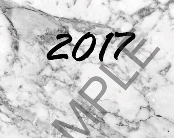 2017 Marbled Planner Cover