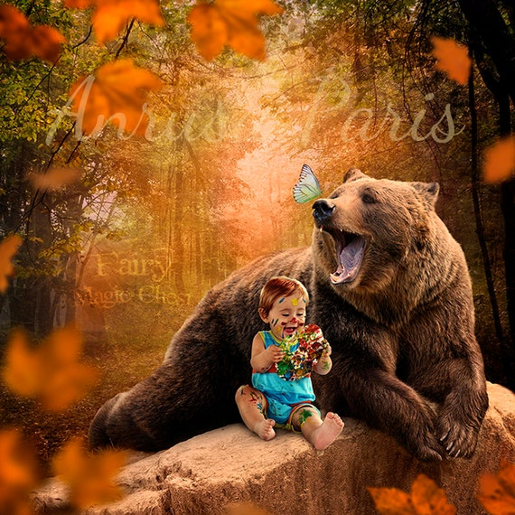 Digital Background Bear Bear Digital Backdrop Funny Animal Etsy