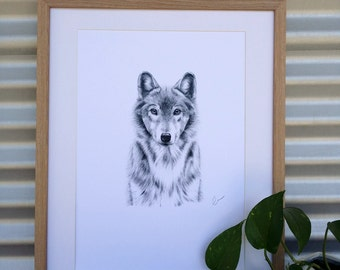 A3 Wolf Print (Ed. 9 of 50)