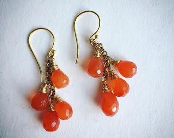 Carnelian and gold  vermeil dangle earrings
