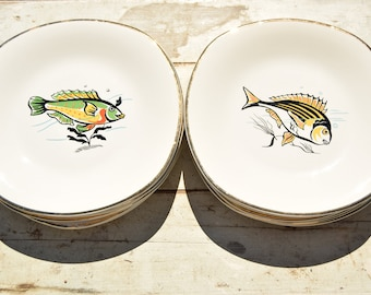 50's / 12 fish plates / Ceranord St Amand / made in France / earthenware