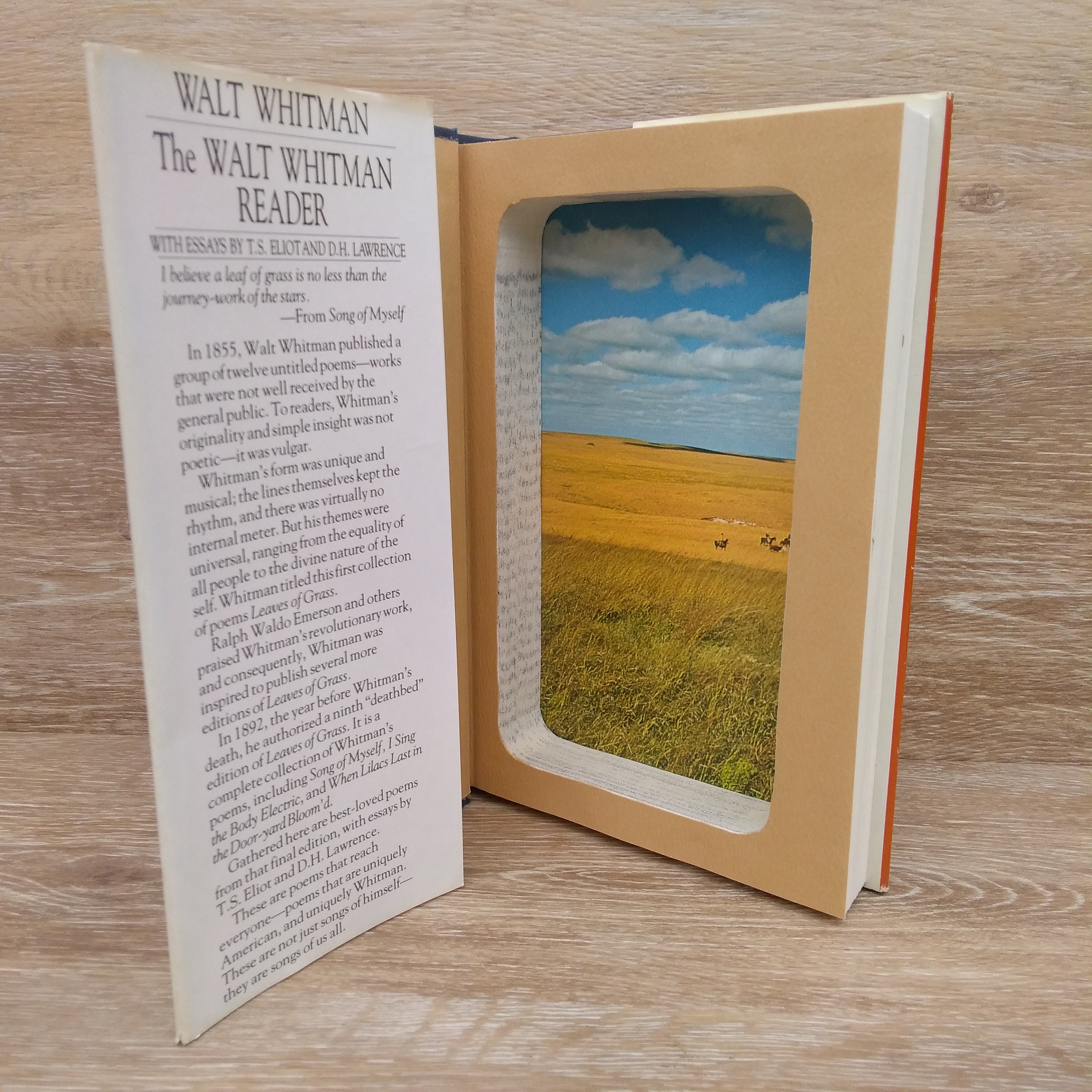 Hollow Book Safe Magnetic Closure The Walt Whitman Reader Leaves Of Grass By Walt Whitman