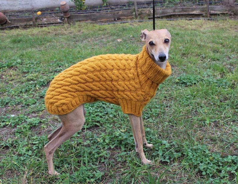 wollen trui van de italiaanse windhond. italiaanse windhond | etsy