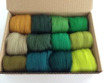 Wool for Beginners, Green Tones Set - 12 colors of South American Merino Wool Top/Roving (5g each) 2 oz total
