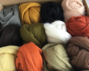 Large Nature Tones Set - 12 colors of South American Merino Wool Top/Roving (2 oz each) 680 g total