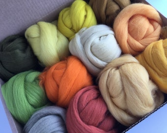 Large Yellow Tones Set - 12 colors of South American Merino Wool Top/Roving (2 oz each) 680 g total
