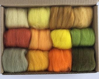 Yellow Tones Set - 12 colors of South American Merino Wool Top/Roving (5g each) 2 oz total