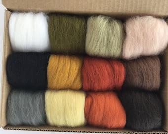 Nature Tones Set - 12 colors of South American Merino Wool Top/Roving (5 g each) 2 oz total