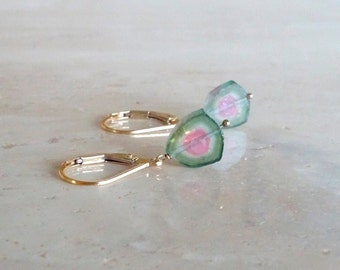 Watermelon Tourmaline earrings,  October Birthday for her, Gold filled Bi-color Tourmaline slice dangle gemstone jewelry