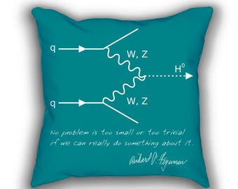 QED Feynman Diagram throw pillows