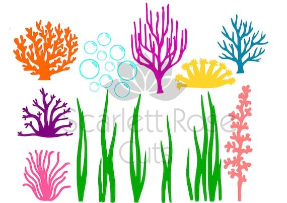 Unter Dem Meer Algen Korallen Blasen Svg Ozean Leben Für Etsy