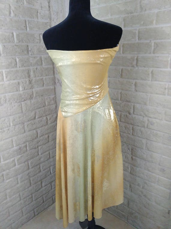 Vintage Flapper Costume Dress