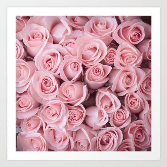 Pink roses art print pink roses wall art flower art print etsy image 0 mightylinksfo