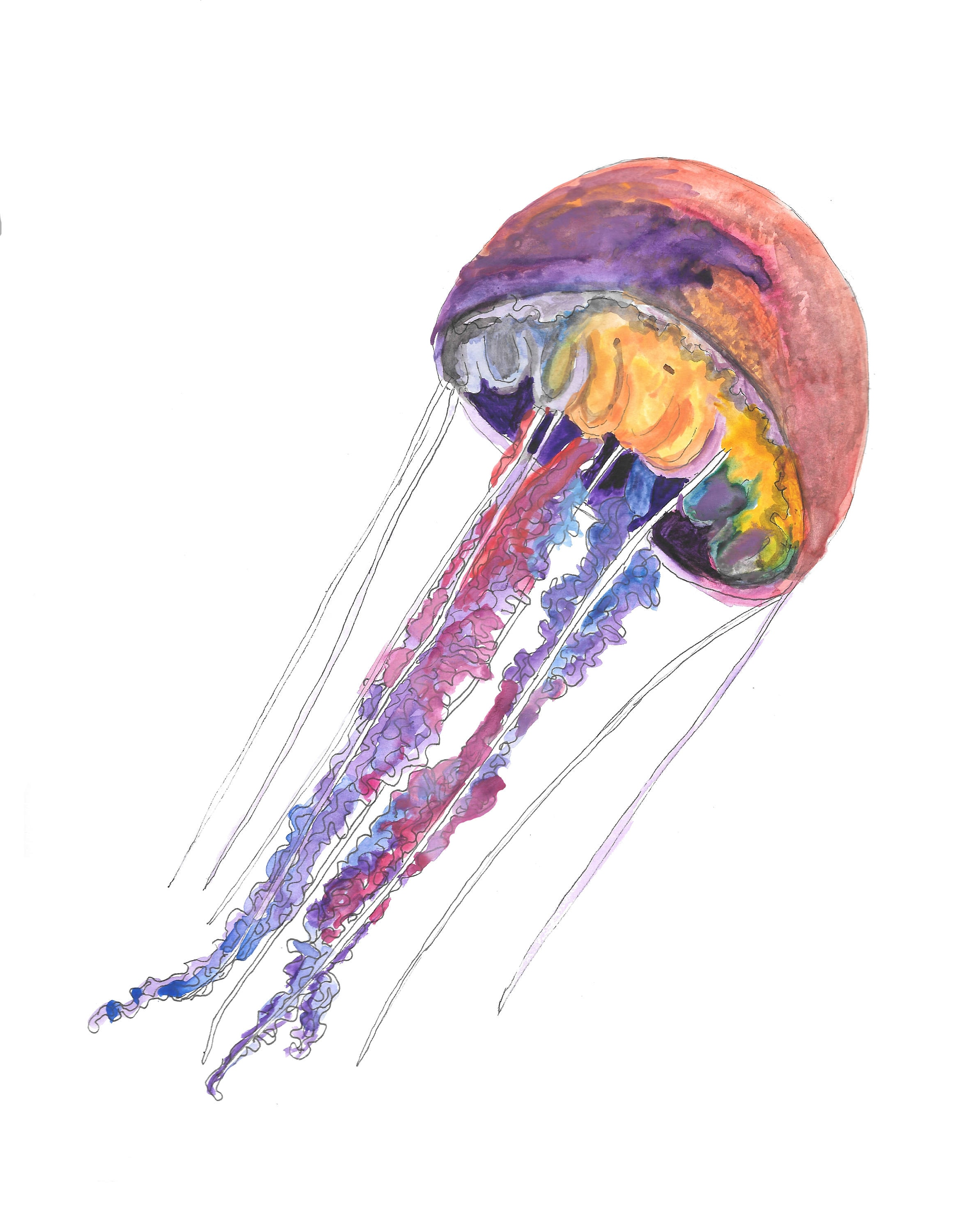 Tropical Jellyfish hand drawn watercolor illustration | Etsy