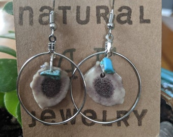 Antler in silver hoops with turquoise