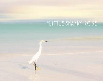 Pastel Pink Beach Art, Florida Beach Decor, White Egret Beach Print, Whitney Beach Longboat Key Photography, Coastal Beach House Wall Decor