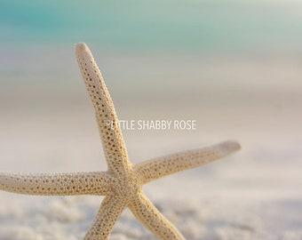 Aqua Mint Starfish Decor, Beach Starfish Art, Starfish and Seashell Art Photo, White Sandy Beach Art, Coastal Wall Decor
