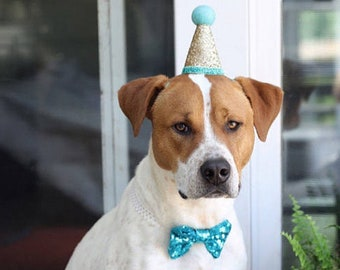 Dog Birthday Hat And Large Bow Tie
