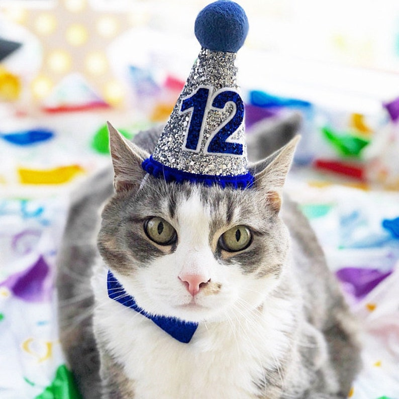 Cat Birthday Hat Small Bow Tie Pet Crown Dog