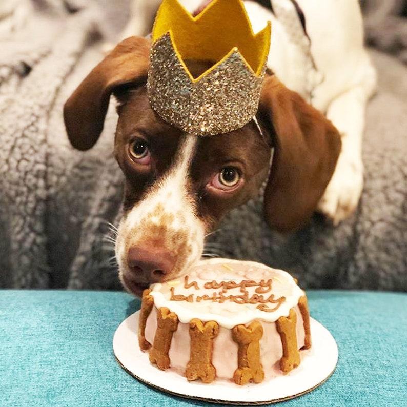 Dog Birthday Hat Pet Crown