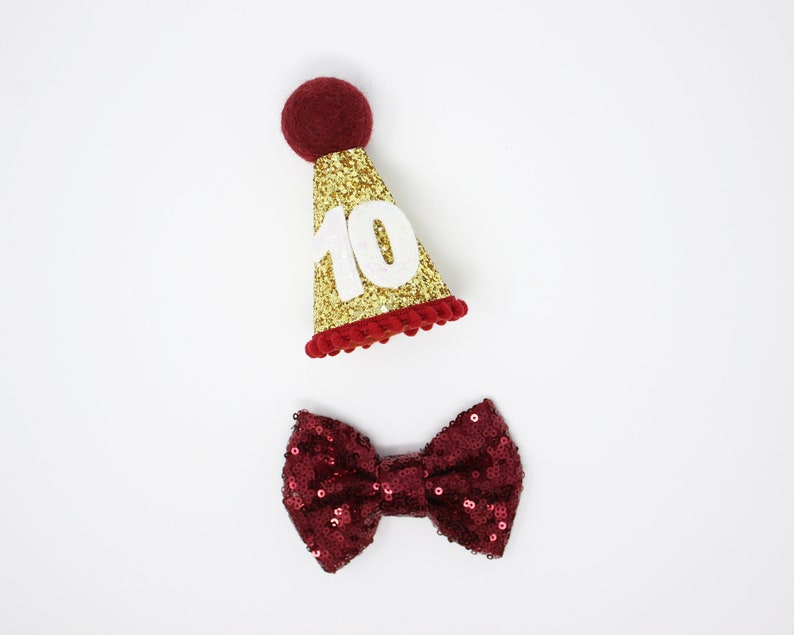 Dog Birthday Hat And Large Bow Tie Gift Pet