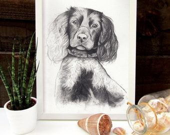 Pet Portrait Drawing, Pet Portrait, Pet Drawing, Animal Portrait, Pencil Portrait, Dog Portrait, Cat Portrait, Gift for Him, Gift for Her