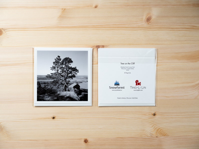 Artist Card  Square  Tree on the Cliff by Ting-Li Lin image 0