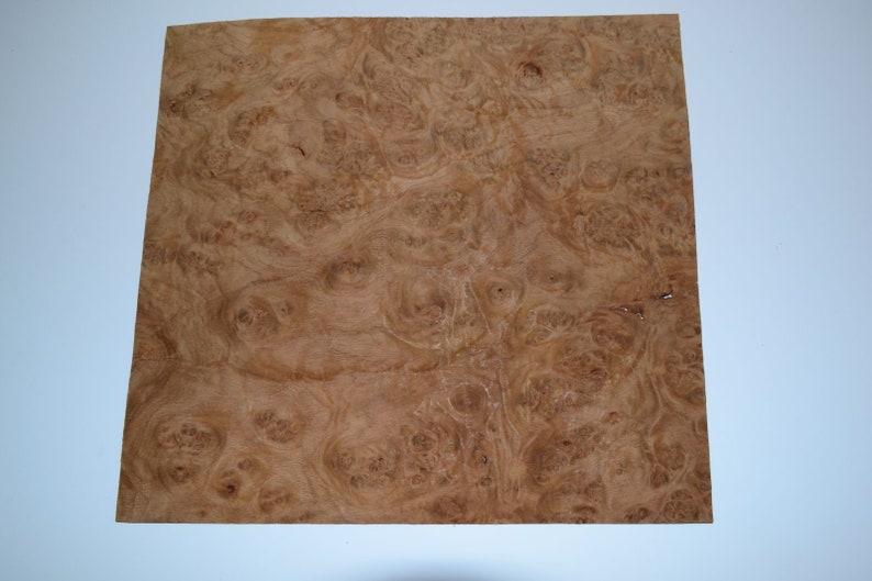 Oak Burl Raw Wood Veneer Sheets 9 x 14.5 inches 1//42nd              E4713-21
