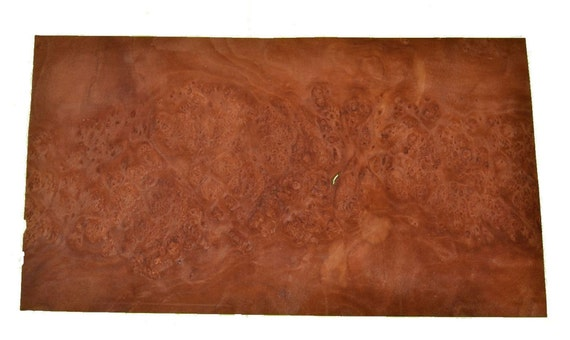 Planetree Burl Raw Wood Veneer Sheets 9 X 17 Inches 1 42nd Or 6mm Thick Bentwood Rings Cigar Humidor