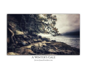 A Winter's Gale (Fine Art Print Mounted on Cradled Wood Panel)