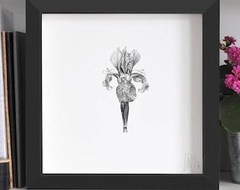 Iris Flower Print
