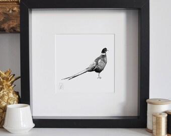 Framed Pheasant Print