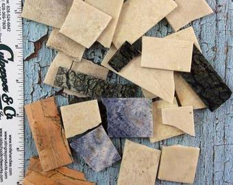 Assorted Coral & Stone Scrap-Blue Coral, Dinosaur Bone, Fossil Coral, Serpentine Stone, Etc.#11