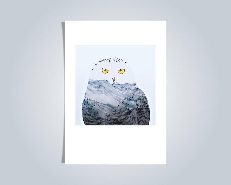 Snowy Owl Illustrated postcard Blank card animal A6 image 0