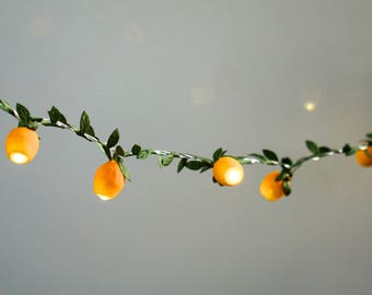 Fairy Lights; string lights; garland; LED Battery operated