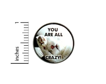 Funny Cute Cat Button You Are All Crazy Pin Kitten Jacket Pinback 1 Inch Gift #40-1