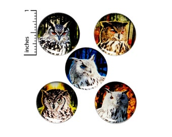 Owl Buttons or Fridge Magnets - Owl Pins - Pins for Backpacks - Pinbacks or Magnets - Owl Lover Gift - 5 Pack Set 1 Inch SP3-3