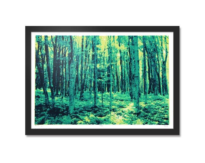 Forest Silkscreen Print  Handmade Screen Printed Art  13x19