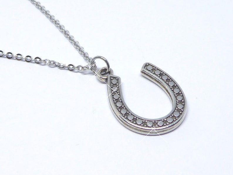 delicate stainless steel necklace with horseshoe pendant for image 0