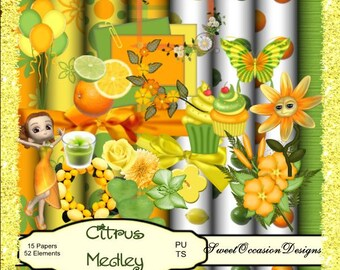 Citrus Medely Scrapbook, Scrap book, Scrapbooking Kit