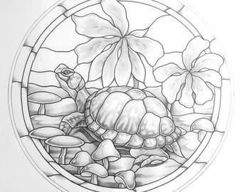 Box Turtle and Mushrooms