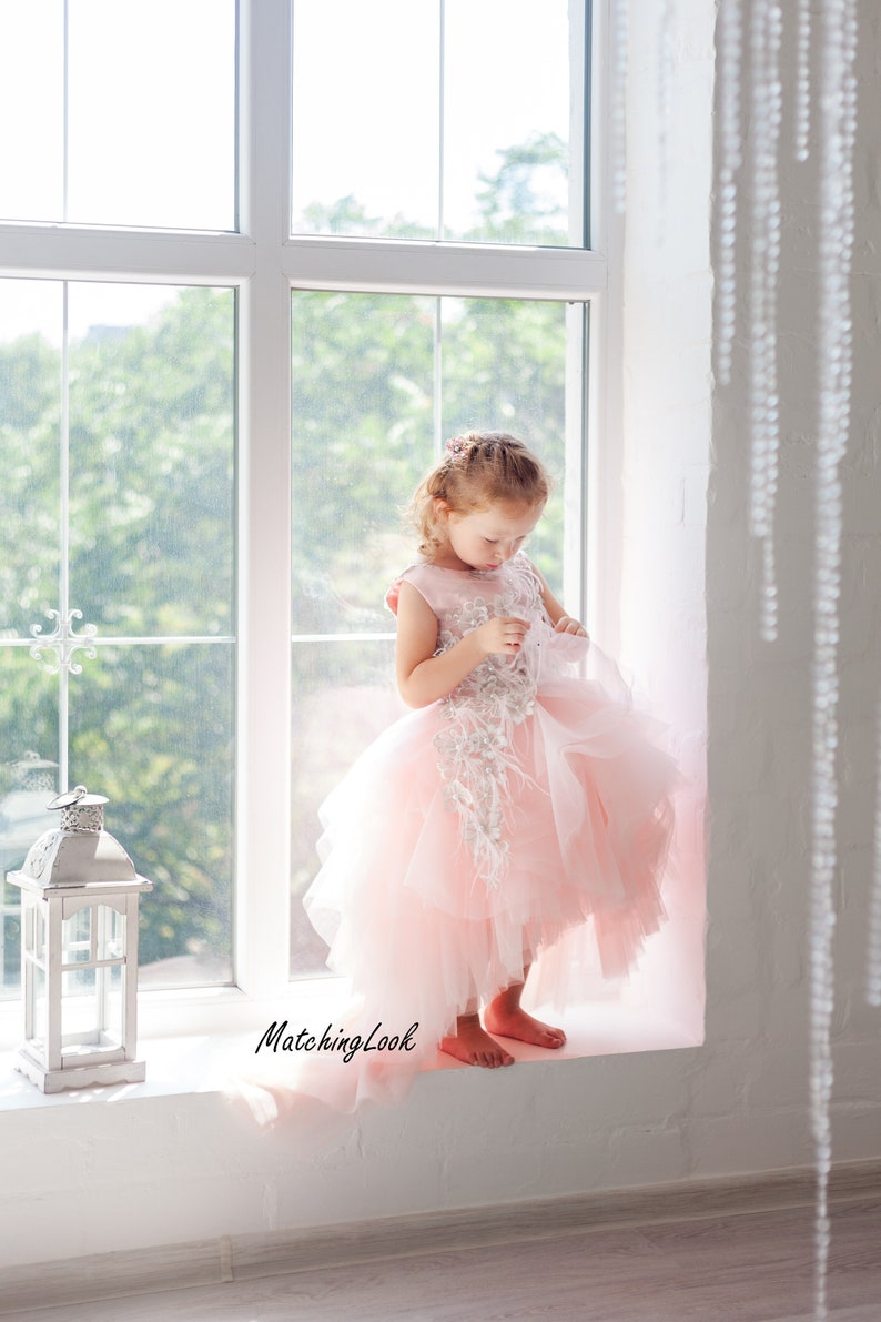 b3f2e1f04 Blush flower girl dresspink flower girl dress tulle tutu | Etsy