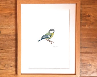 2018 collection 'TIT'S' - Great Tit Watercolour Illustration - A4 Print (not framed)