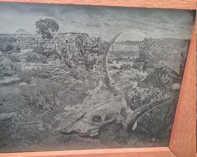 Cow Skull in the Desert