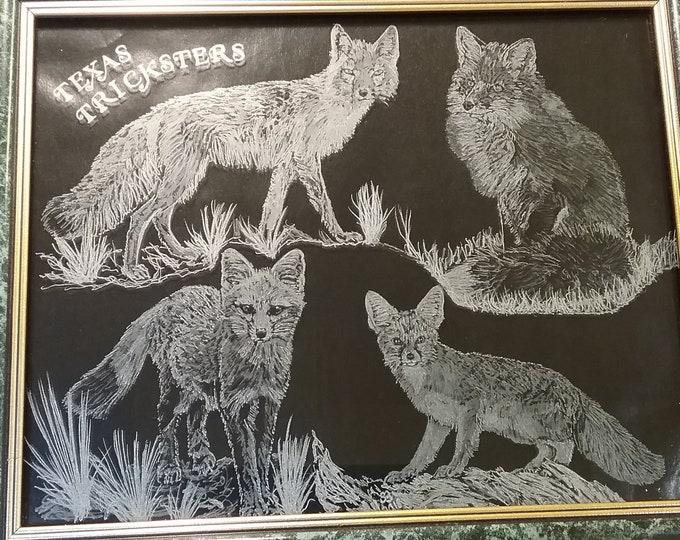 Texas Wildlife series. Texas Tricksters