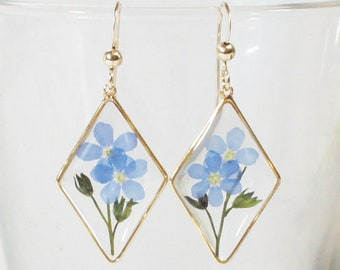 Nature earrings Real Flower Earrings Gift for Mother/'s Day Forget-me-not Flower Earrings With 925 Sterling Silver
