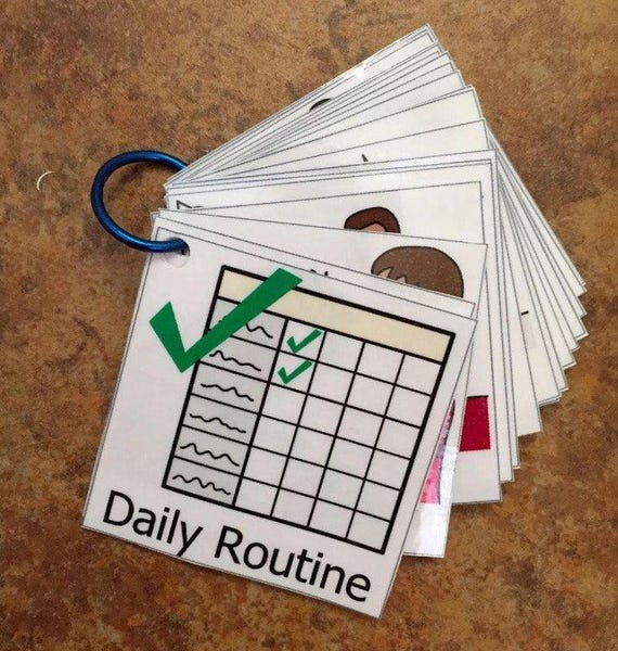 Daily Visual Schedule Routine Daily Flash Cards Symbols Autism Etsy